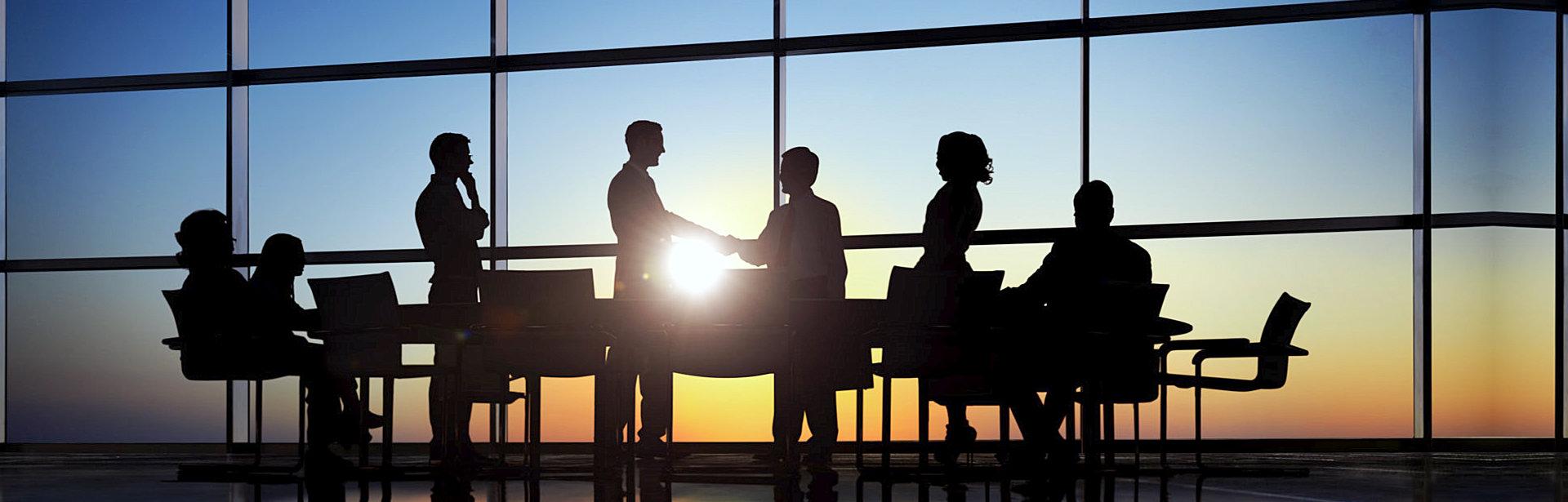 professionals having meeting inside board room